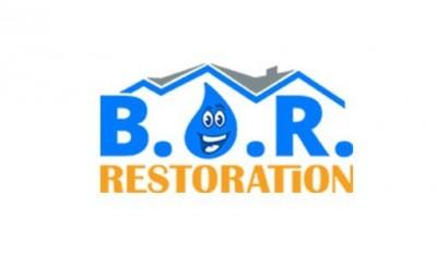 best-option-restoration-franchise-business-opportunity